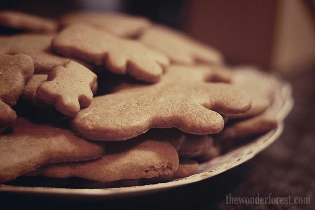 Recipe Time! My Pumpkin Spice Gingerbread!