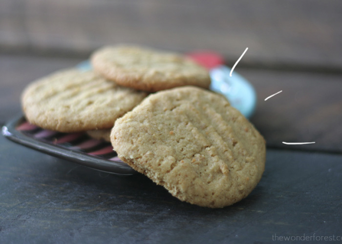Easy Peanut Butter Cookies from Ingredients You Already Have!