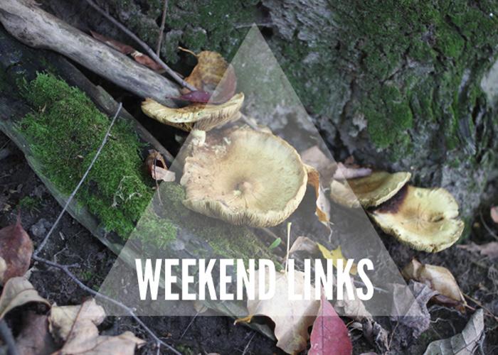 Weekend Links: Things I've Found This Week.