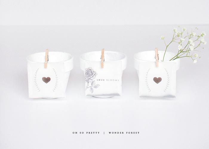 Love Blooms: Seed Packet Printables