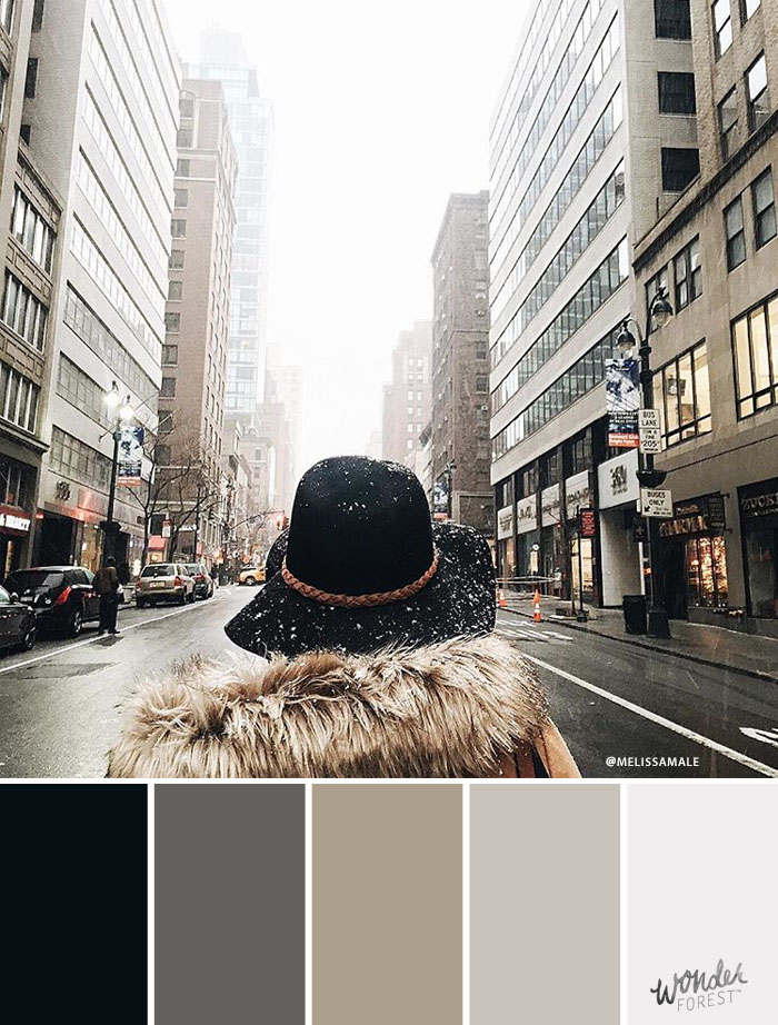 Neutral Winter Color Palette