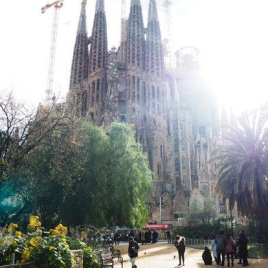 Why You Need to Visit Barcelona This Year