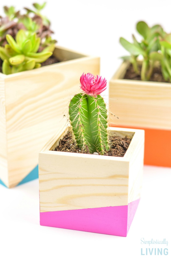 Color Block Wood Planter DIY