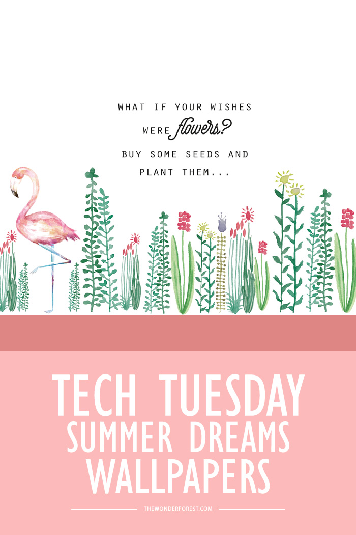 TECH TUESDAY: Summer Dreams Wallpapers