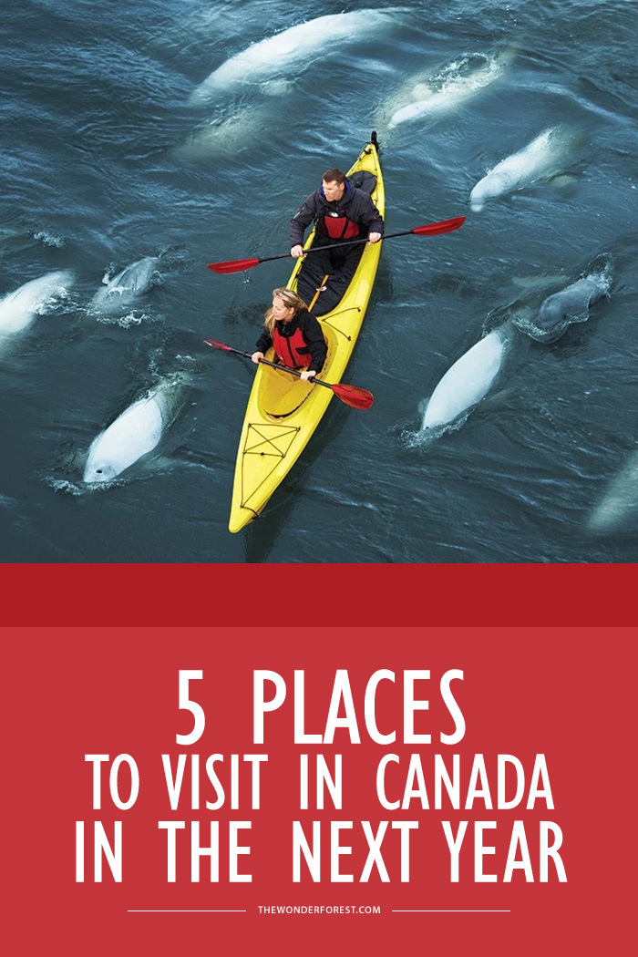 5 Places in Canada to Visit in the Next Year