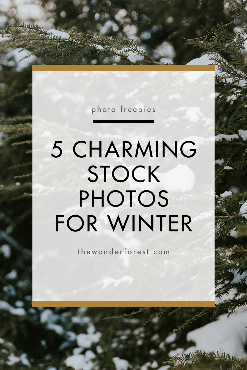 5 Charming Stock Photos for Winter