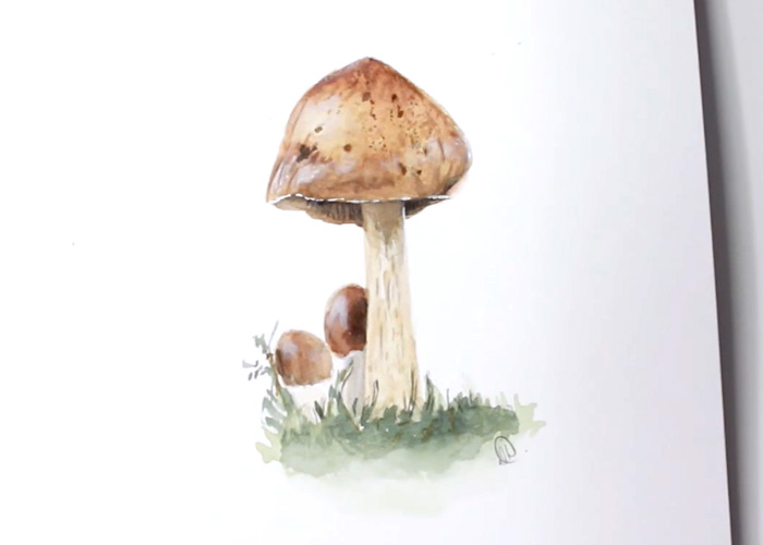 How To Paint a Wild Mushroom