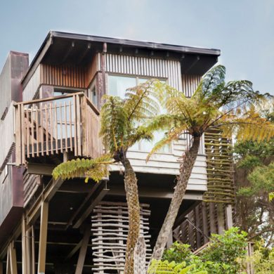 7 Tree Houses You Can Spend The Night In