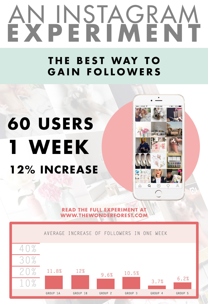 A Real Social Experiment: How to Gain Instagram Followers Organically