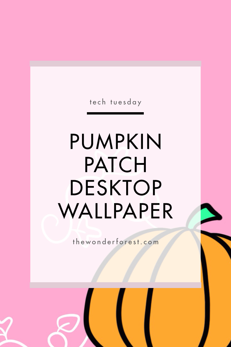 TECH TUESDAY: Pumpkin Patch Desktop Wallpaper