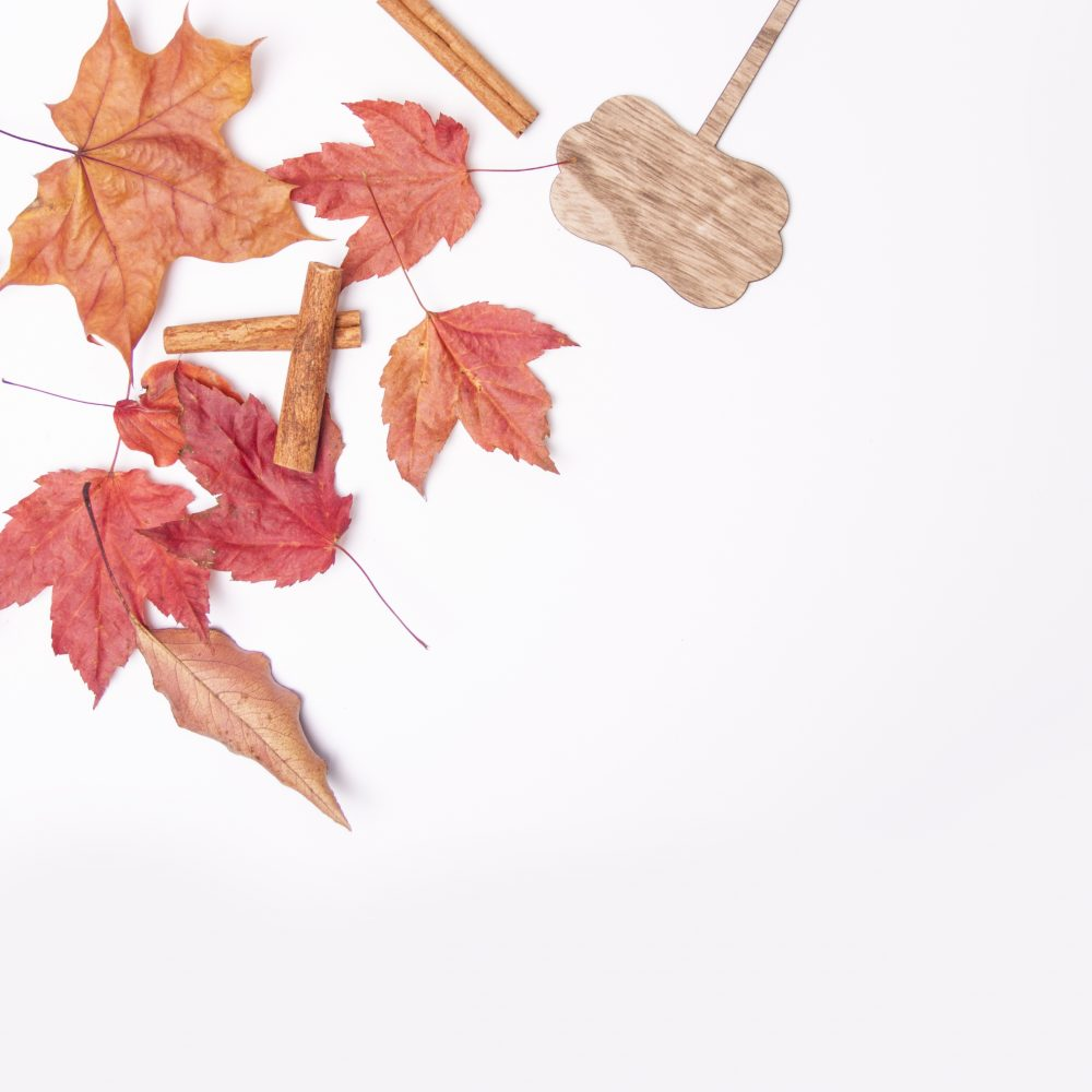 5 Autumn Themed Stock Photos To Use For Your Brand
