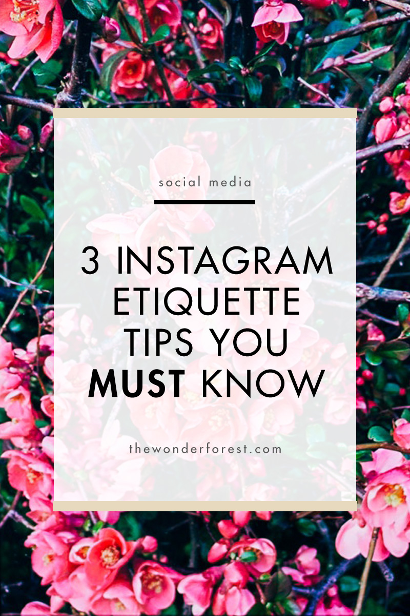 3 Instagram Etiquette Tips You Must Know