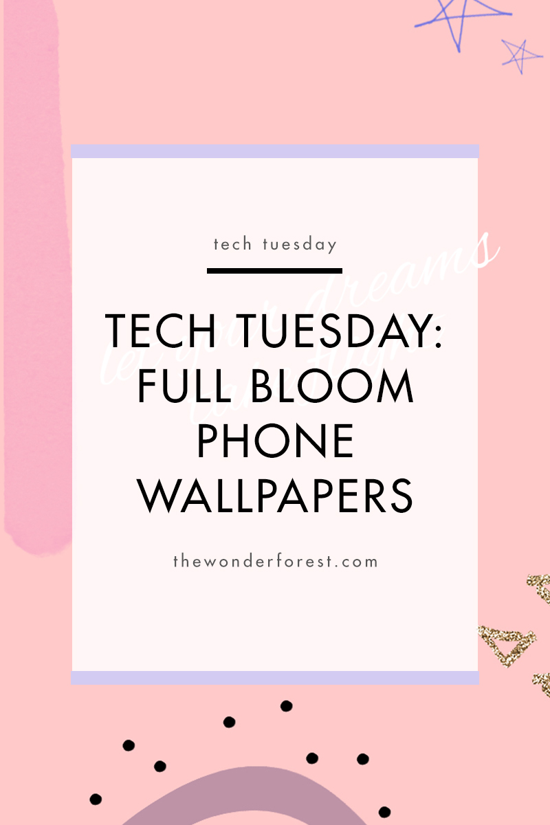 TECH TUESDAY: Full Bloom Phone Wallpapers