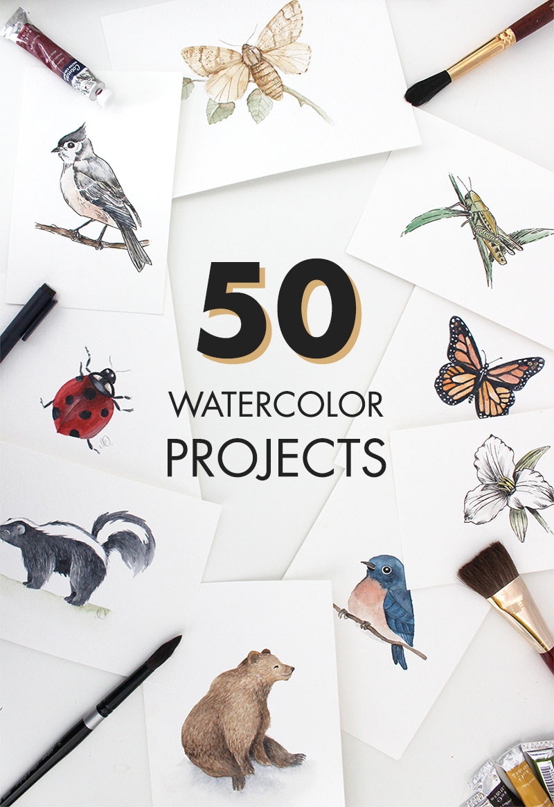 50 Watercolor Tutorials!