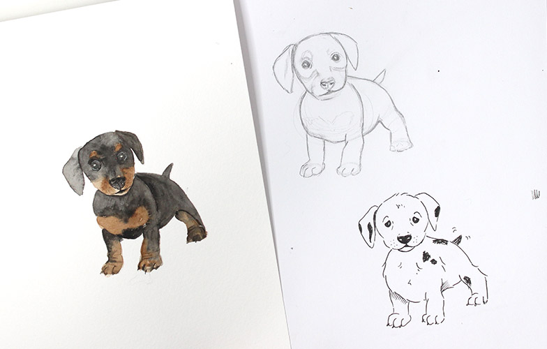 How To Draw a Dog (or ANY Animal!)