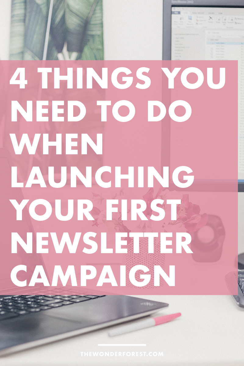 4 Things You Need to Do When Launching Your First Newsletter Campaign