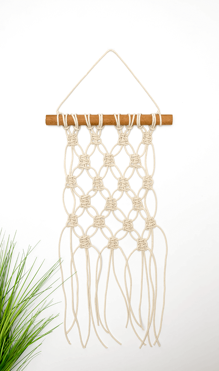 Beginner Mini Macrame Wall Hanging