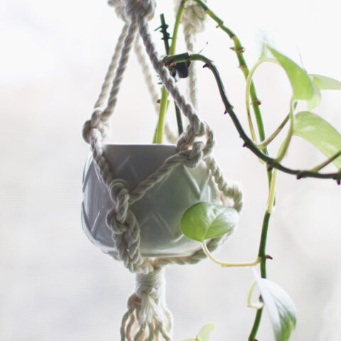 DIY Macrame Plant Hanger for Beginners