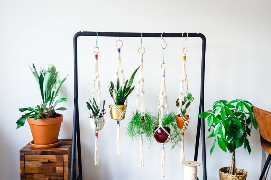10 Free Macrame Plant Hangers and Wall Hanging Patterns